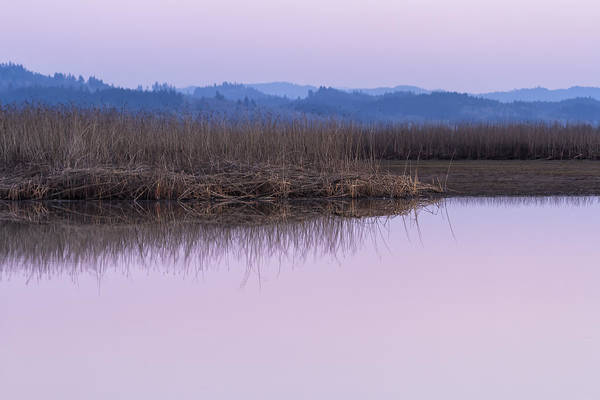 Photograph - Calm On The Marsh by Belinda Greb