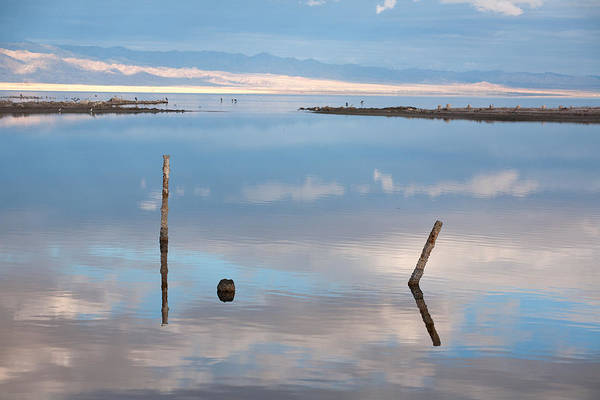 Photograph - Calm by Peter Tellone