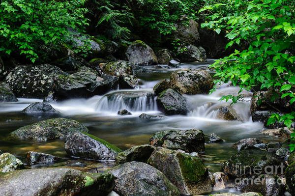 Mission Bc Photograph - Calming Waters by Rod Wiens