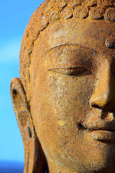 Human Face Photograph - Calmness And Harmony by Justhavealook