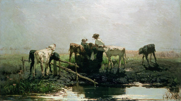 Trough Wall Art - Painting - Calves At A Pond, 1863 by Willem Maris