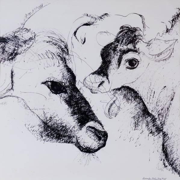 Farm Animals Photograph - Calves, Gt Garnetts II Pen & Ink On Paper by Brenda Brin Booker