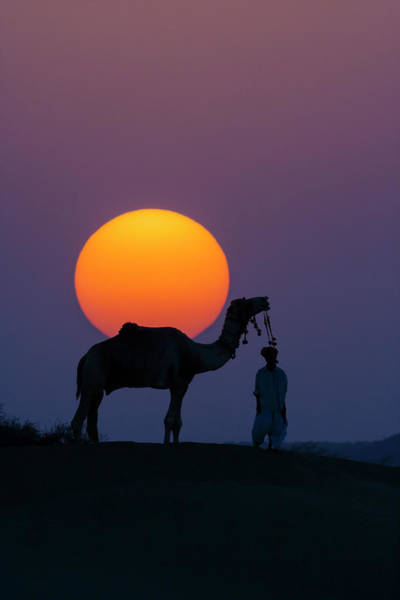 Adorn Photograph - Camel And Person At Sunset, Thar by Art Wolfe