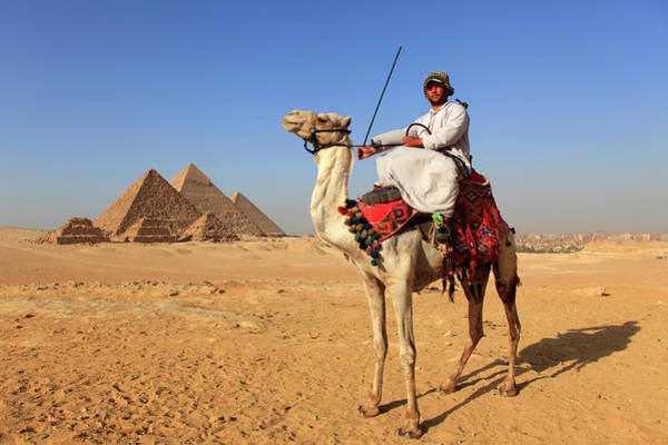 Real People Photograph - Camel Rider Near The Pyramids At Giza by Massimo Pizzotti