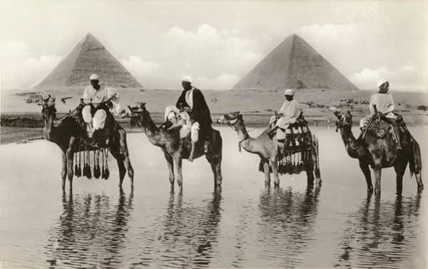 Wall Art - Photograph - Camels And Their Riders Standing by Mary Evans Picture Library