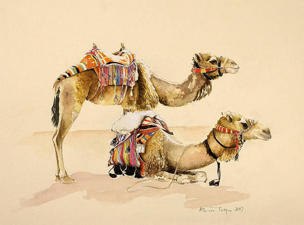 Saddle Wall Art - Painting - Camels From Petra by Alison Cooper