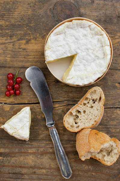 Currants Photograph - Camember Cheese With Red Currant And by Westend61