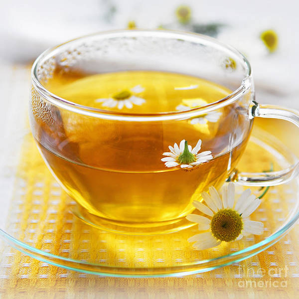 Wall Art - Photograph - Chamomile Tea by Elena Elisseeva