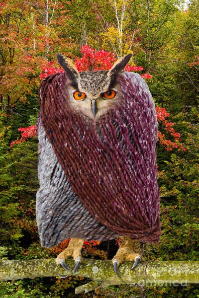 Photograph - Camouflaged Owl by Les Palenik