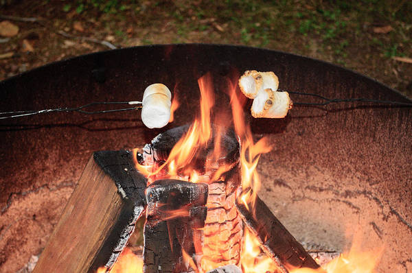 Photograph - Campfire Marshmallow Roast by Tikvah's Hope