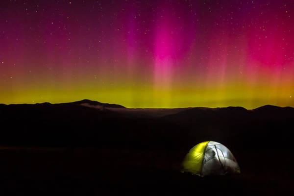 Photograph - Camping Under Aurora Skies by Jeff Sinon