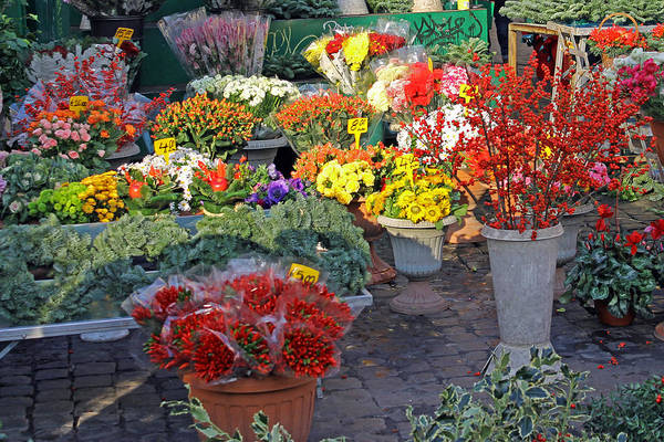 Photograph - Campo De' Fiori by Tony Murtagh