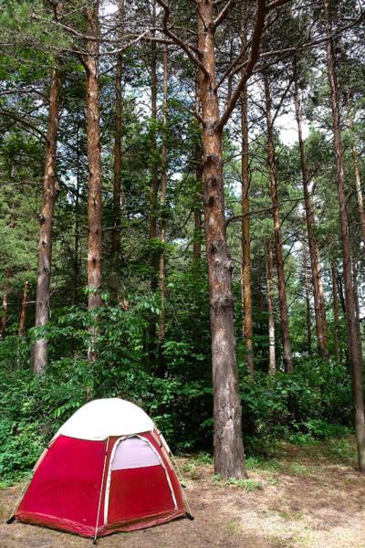 Campsite Near Holland State Park Art Print
