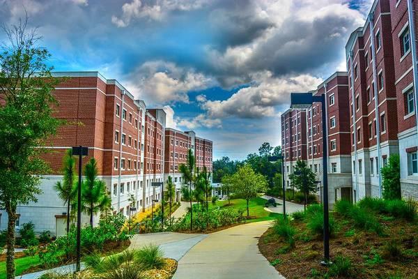 University Of West Florida Photograph - Campus Life by Jon Cody