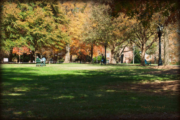 Photograph - Campus Study Time - Davidson College by Paulette B Wright