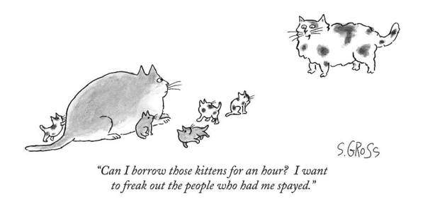 Kitten Drawing - Can I Borrow Those Kittens For An Hour?  I Want by Sam Gross