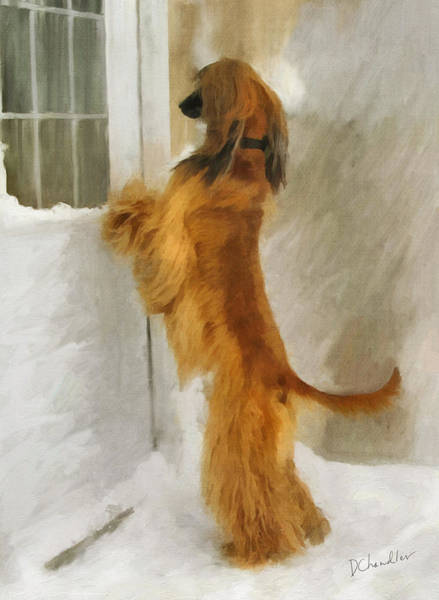 Painting - Can I Come In Now? by Diane Chandler
