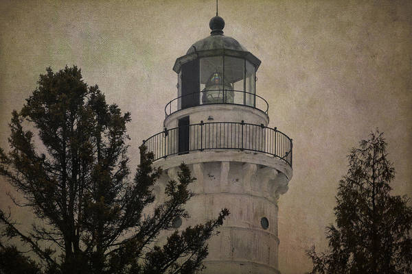 Photograph - Cana Island Light by Joan Carroll
