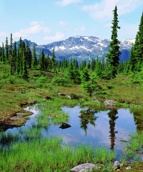 Backcountry Wall Art - Photograph - Canada, British Columbia by Jaynes Gallery