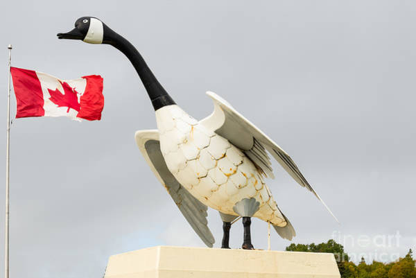 Photograph - Canada Goose - 28 Foot Tall Metal Monument by Les Palenik