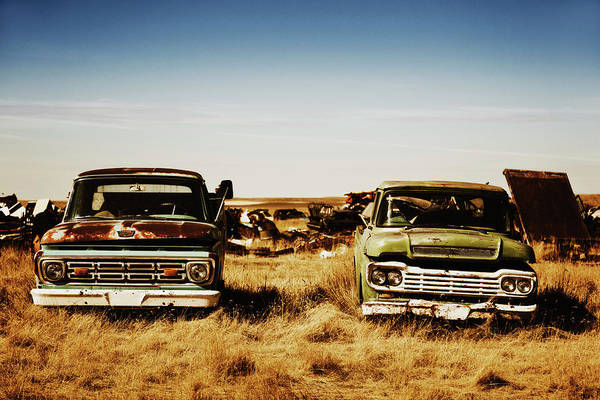 Damaged Photograph - Canada, Junk Yard With Old Us Cars by Westend61