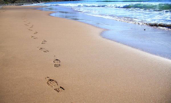 Cabot Trail Photograph - Canada, Nova Scotia, Footprints by Patrick J. Wall