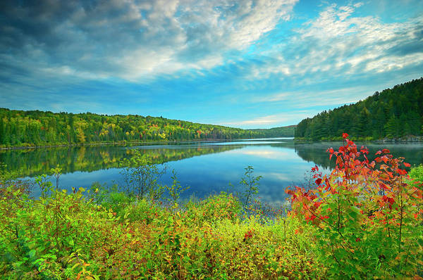 Algonquin Park Photograph - Canada, Ontario, Algonquin Provincial by Jaynes Gallery