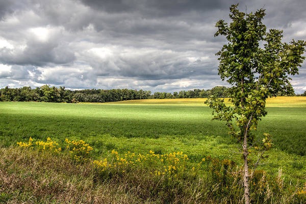 Photograph - Canadian Farm Land by Nick Mares