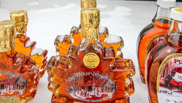 Photograph - Canadian Maple Syrup by Nick Mares