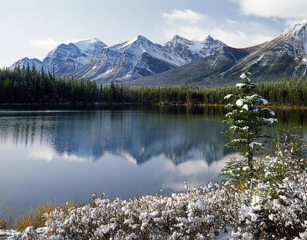 Photograph - 1m3541-canadian Peak Reflected In Herbert Lake by Ed  Cooper Photography