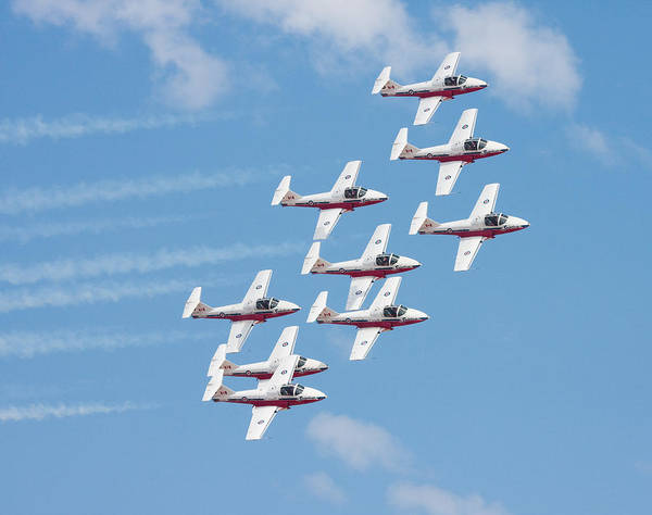 Photograph - Canadian Snowbirds by Nathan Rupert