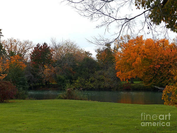 Photograph - Canal And Fall Colors - M Landscapes Fall Collection No. Lf42 by Monica C Stovall