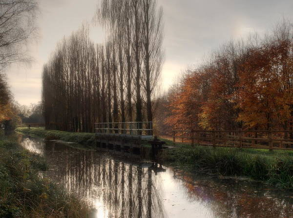 Photograph - Canal In Autumn by Stephen Barrie