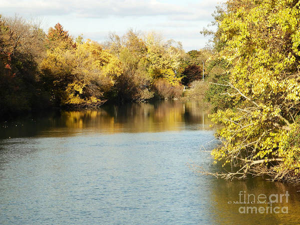 Photograph - Canal Shoreline Fall Colors - M Landscapes Fall Collection No. Lf25 by Monica C Stovall