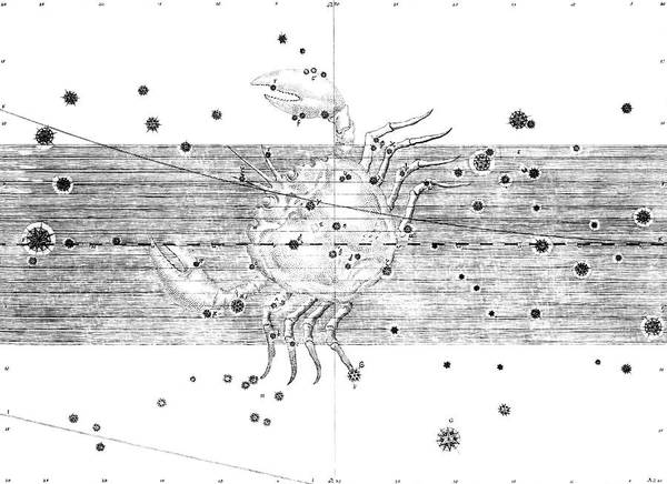 First Star Photograph - Cancer Constellation by Royal Astronomical Society/science Photo Library