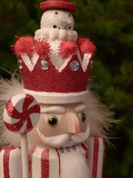 Photograph - Candy Cane Nutcracker by Richard Reeve