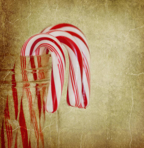 Photograph - Candy Canes by Kim Hojnacki