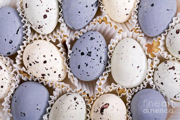 Wall Art - Photograph - Candy Eggs by Jane Rix