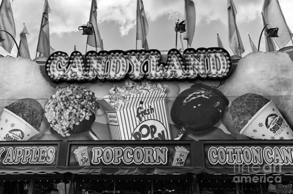 Photograph - Candyland Mono by John Rizzuto
