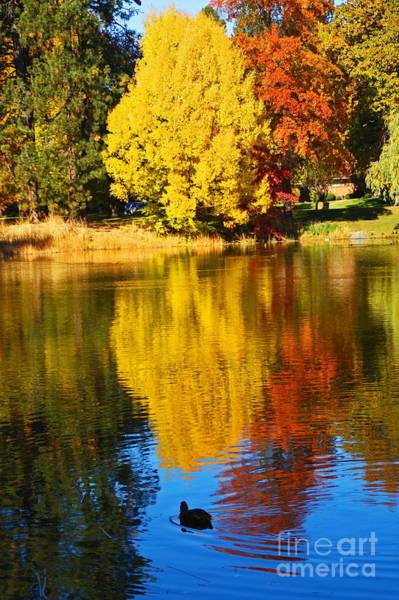 Manito Park Spokane Photograph - Cannon Hill Pond Sixty Seven by Donald Sewell
