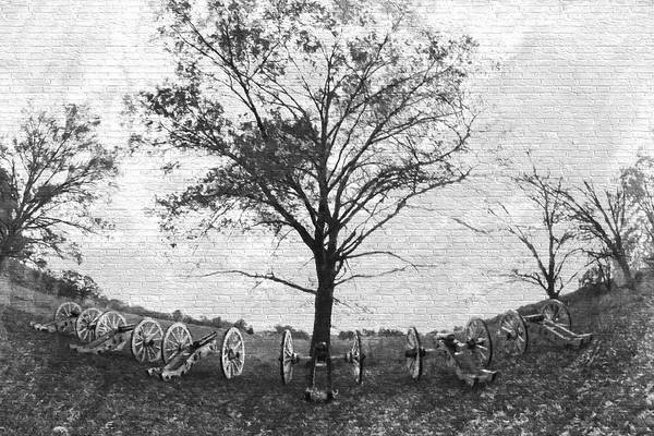 Photograph - Cannons Half Circle In Black And White Brick by Alice Gipson
