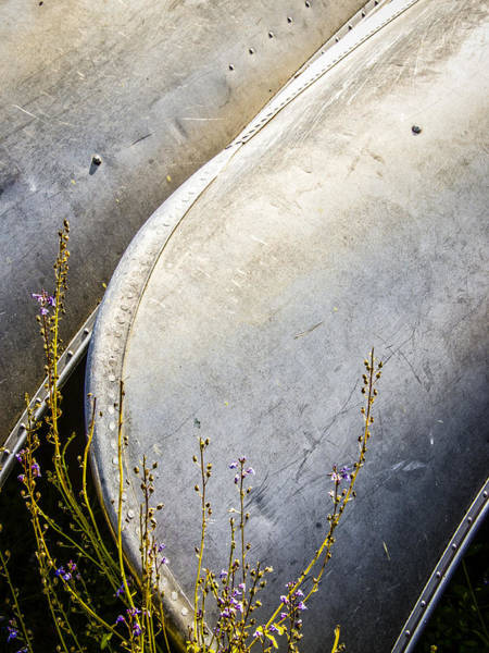 Photograph - Canoes And Lavender by Carolyn Marshall