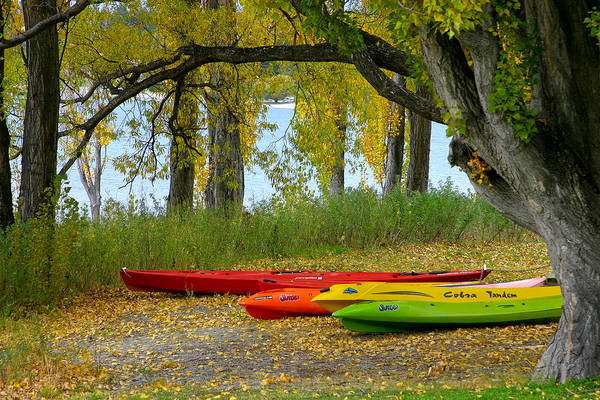 Photograph - Canoes In Autumn by Jenny Setchell