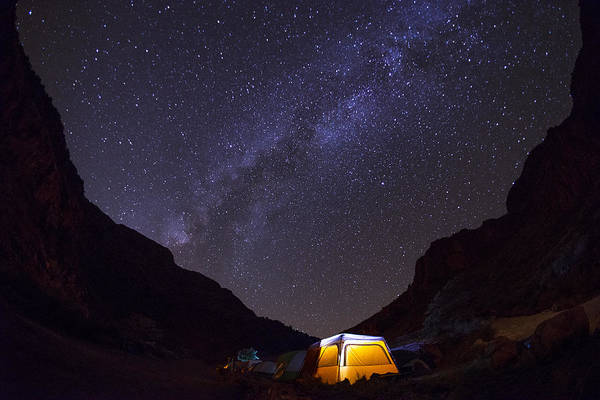 Camping Wall Art - Photograph - Canopy Of Stars by Aaron Bedell