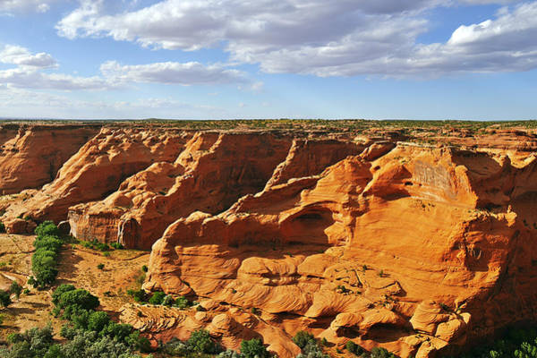 Photograph - Canyon De Chelly From Face Rock Overlook by Christine Till