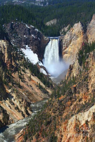 Wall Art - Photograph - Canyon Falls At Yellowstone 01 by Todd L Thomas