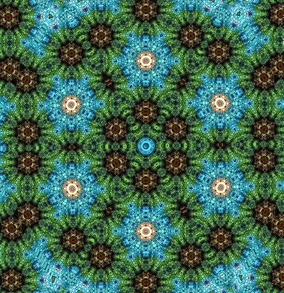 Digital Art - Canyon Lands Flower Mandala   by Karen Buford