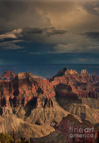 Photograph - Canyon View North Rim Grand Canyon National Park Arizona by Dave Welling