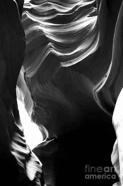 Photograph - Canyon X In Black And White by Thomas R Fletcher