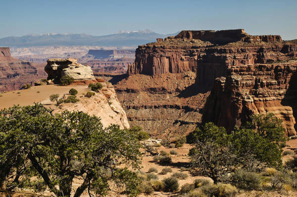 Photograph - Canyonlands by Lee Kirchhevel
